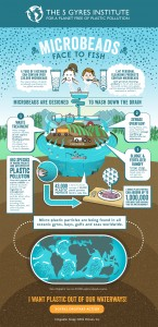5gyres_microbeads_infographic