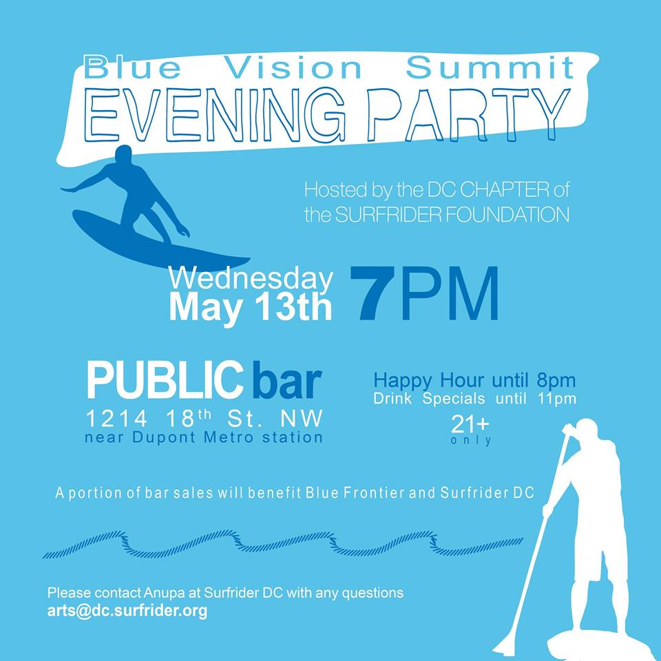 2015 Blue Vision Summit Evening Party